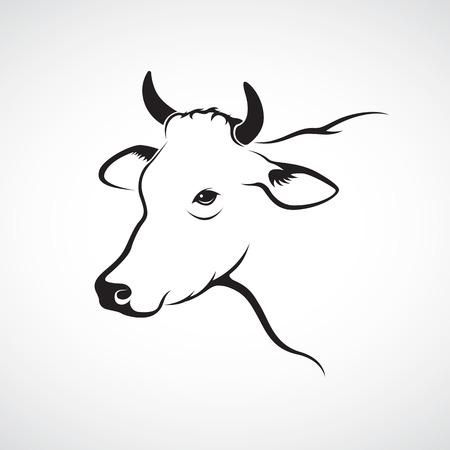 cabeza: Vector de imagen de una cabeza de vaca en un fondo blanco