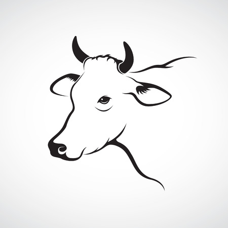 dairy cattle: Vector image of an cow head on a white background