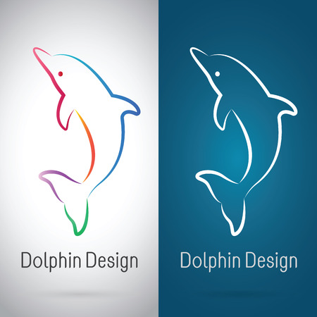 Vector image of an dolphin design on white background and blue background, Logo, Symbol Illustration