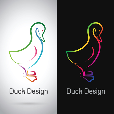 duckling: Vector image of an duck design on white background and black background, Logo, Symbol Illustration