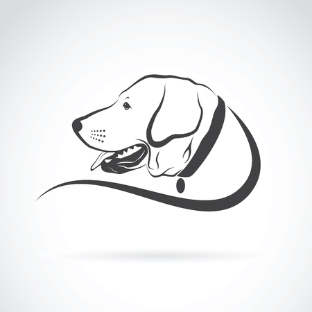 dog pen: Vector image of an dog labrador head on white background