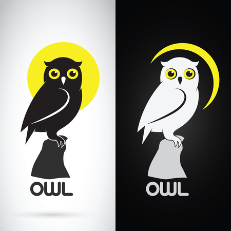 noche y luna: Vector de imagen de un diseño del buho en el fondo blanco y el fondo negro, logotipo, símbolo Vectores