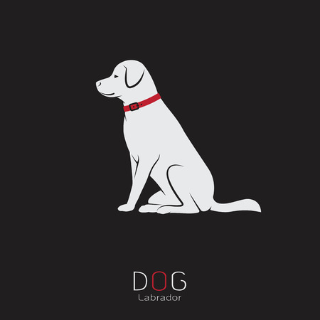 black red: Vector image of an dog labrador on a black background