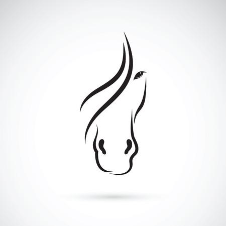 caballos negros: Imagen del vector de un dise�o de la cara del caballo en el fondo blanco