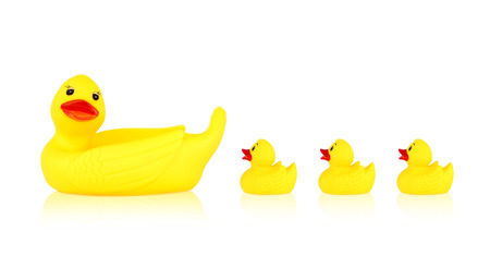 squeak: Image of yellow mother duck rubber and ducklings rubber isolated on white background Stock Photo