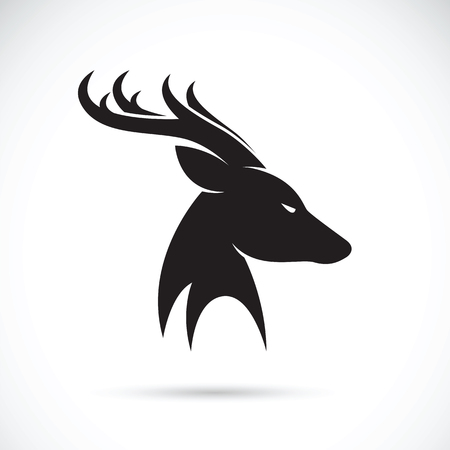 vector images: Vector images of deer head on a white background.