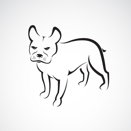 short haired: dog design on white background