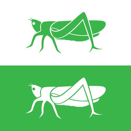 langosta: diseño de saltamontes en el fondo blanco y el fondo verde