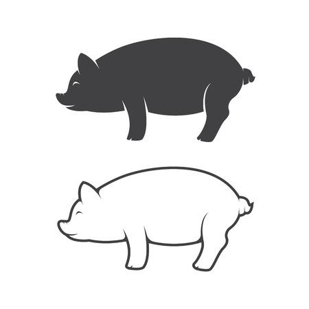 cerdo caricatura: diseño del cerdo en el fondo blanco Vectores