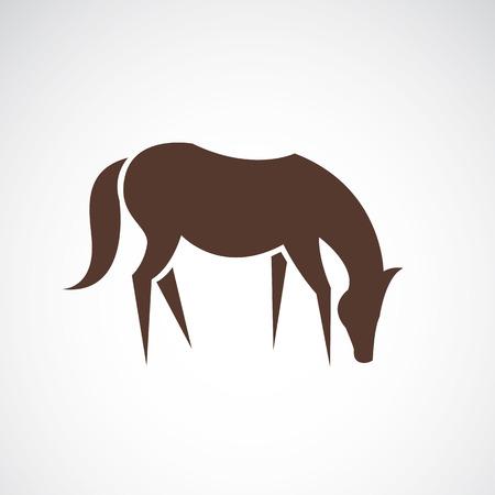 jovial: horse design on white background Illustration