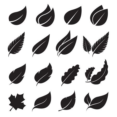feuille arbre: feuilles, icône, ensemble sur fond blanc