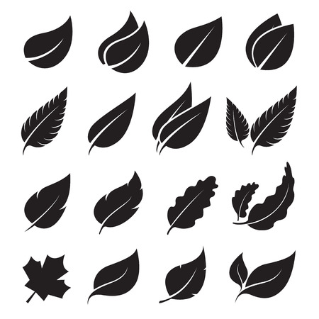black tree: leaves icon set on white background
