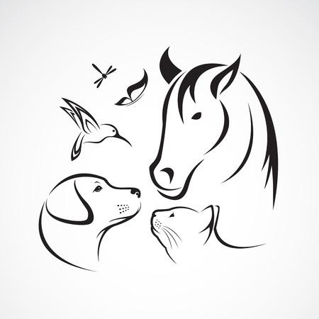 gato dibujo: vector grupo de animales de compañía - caballo, perro, gato, pájaro, mariposa, libélula aislado en el fondo blanco