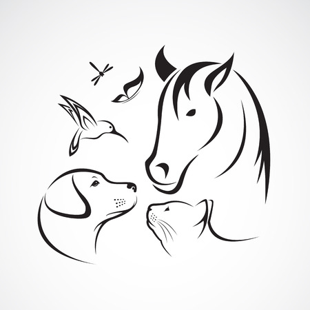 Vector Gruppe von Haustieren - Pferd, Hund, Katze, Vogel, Schmetterling, Libelle isoliert auf weißem Hintergrund