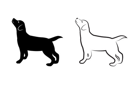 animal silhouettes: Vector image of an dog labrador on white background