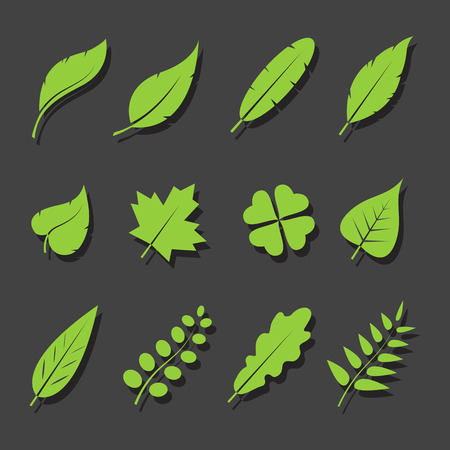 gum tree: Vector leaves green icon set on black background