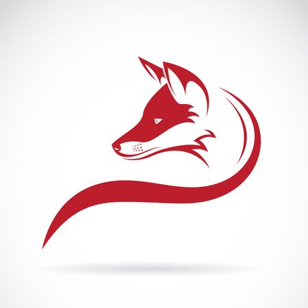 Vector image of an fox head on white background Stock Illustratie