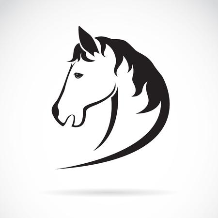 Vector immagine di un disegno testa di cavallo su sfondo bianco