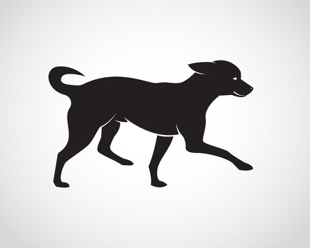 tiptoe: Vector image of an dog on white background. Chihuahua Puppies