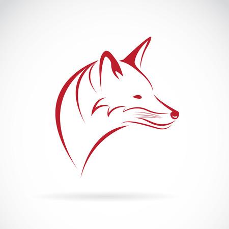 visage profil: Image d'une tête de renard sur fond blanc