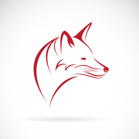 clever: Image of an fox head on white background