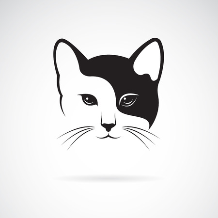 humour: Vector image of an cat face design on white background.