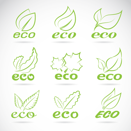 tree design: Green leaves design. Ecology icon set. Green eco icons badge vector.