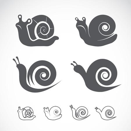 Vector group of a snail on white background Ilustração
