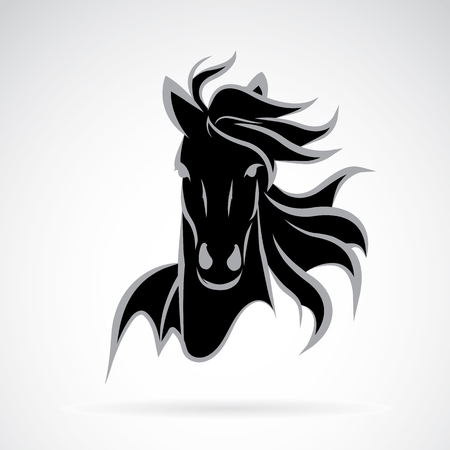 ponies: Vector image of an horse face design on white background