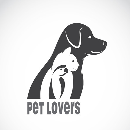 Vector image of an dog cat and bird on white background. Animal pet design