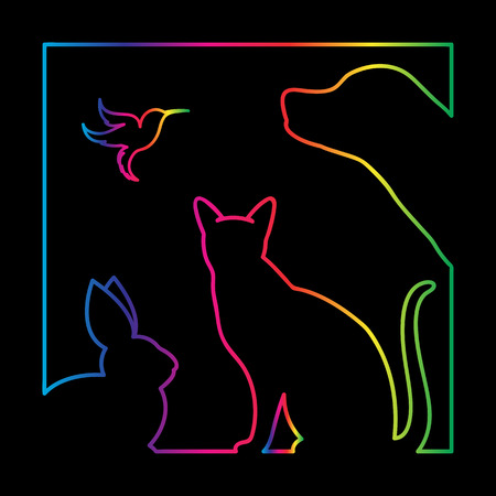 Vector group of pets in the frame - Dog, cat, bird, rabbit, Isolated on a black background