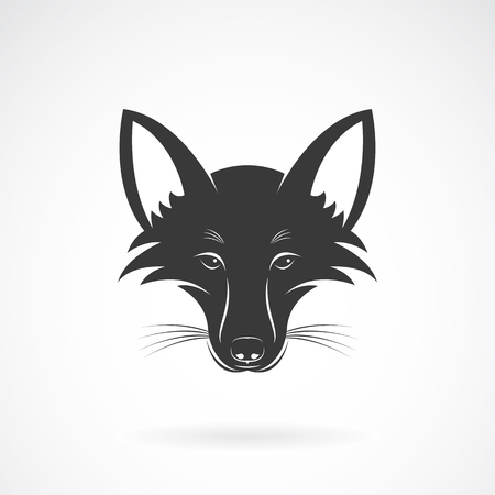 fox face: Vector image of an fox face design on white background