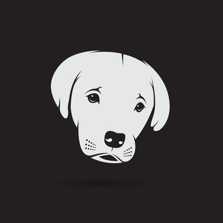 labrador puppy: Vector image of an labrador puppy face on black background. Dog design