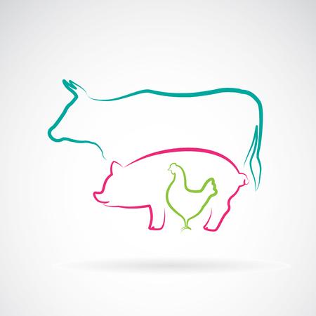 aves de corral: grupo de vectores de la etiqueta granja de animales - vaca, cerdo, pollo
