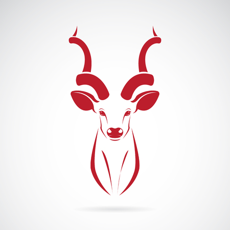 Vector image of an kudu antelope horns on white background Illustration