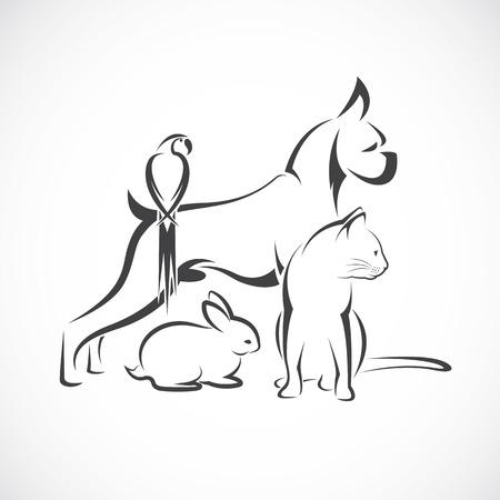 Vector group of pets - Dog, cat, bird, rabbit, isolated on white background Illustration