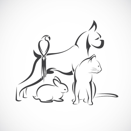black: Vector group of pets - Dog, cat, bird, rabbit, isolated on white background Illustration