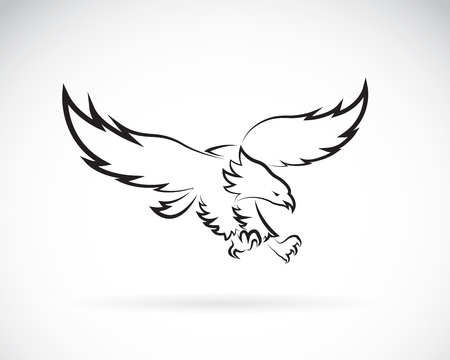bald cartoon: Vector image of an eagle design on white background