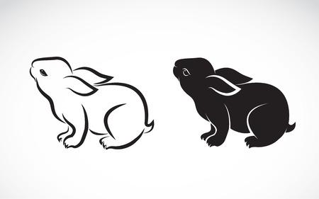 silhouette lapin: conception de lapin sur fond blanc Illustration