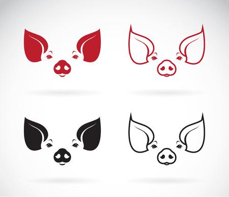 imagen de una cabeza de cerdo en el fondo blanco