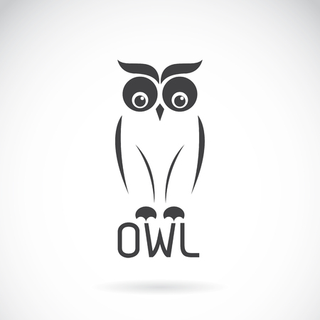 avian: images of owl design on a white background.