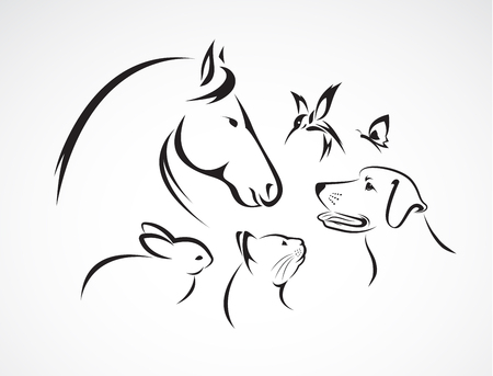 ペットの馬、犬、猫、鳥、蝶、白い背景で隔離のウサギのグループ  イラスト・ベクター素材