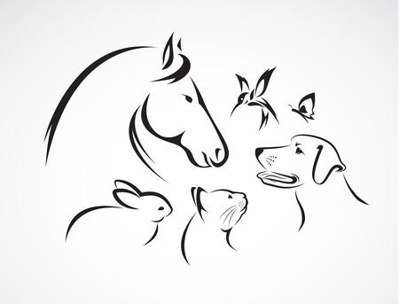 Gruppo di animali domestici - cavallo, cane, gatto, uccello, farfalla, coniglio isolato su sfondo bianco