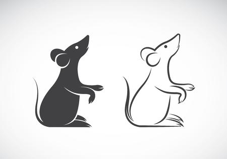 Afbeelding van een rat ontwerp op een witte achtergrond Stockfoto - 57569140