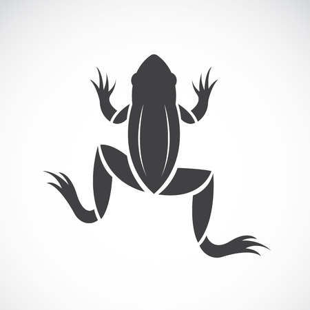 webbed legs: image of a frog design on white background