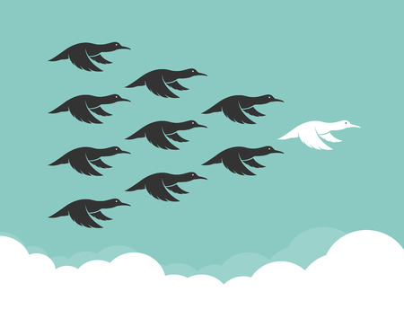 wild duck: Flock of mallard flying in the sky, Leadership concept, Wild Duck