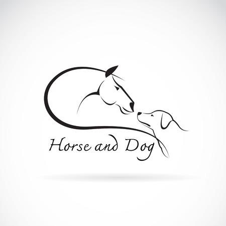 馬と白い背景の上の犬の画像