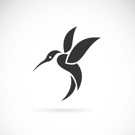image of an hummingbird design on white background