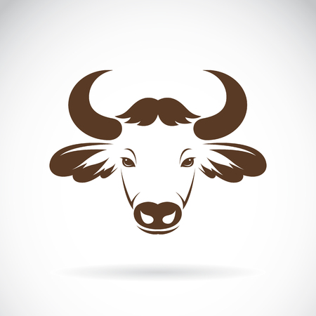 bison: Vector images of bison head on a white background., Vector bison head for your design.
