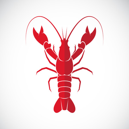 tail: Vector image of an lobster design on white background., Lobster Icon., Vector lobster for your design.